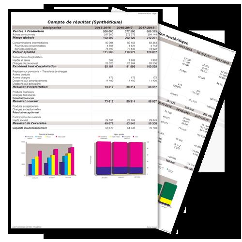 Le pr visionnel activa conseils - Liste des cabinets d expertise comptable au senegal ...